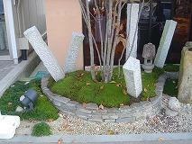 m-moss-planting1.jpg