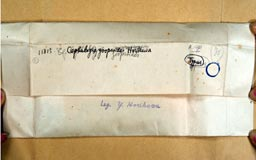 Cepahloziazoopsoides2m.jpg