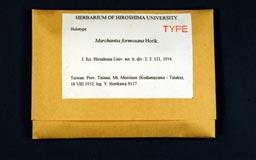 marchantiaform1m.jpg