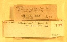 isotheciumsubdiversformos2m.jpg