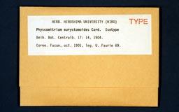 physcomitriumeurystomoi1m.jpg