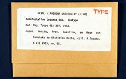 sematophyllum_toyamae1m.jpg